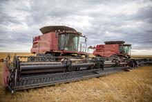 Combine Harvesters Harvesting Crop