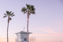 Lifeguard Stand And Palm Trees...