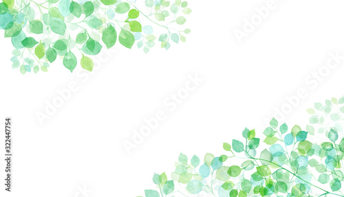 Foto 木漏れ日の水彩イラスト 2隅装飾フレーム トレースベクター(2つの木の葉群間のレイアウト変更のみ可能)