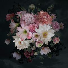 Fototapeta Vintage Baroque bouquet. Beautiful garden flowers and leaves on black background.