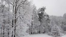 Snow Falling In Open Field Sur...
