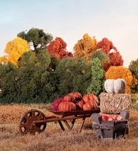 Basket Of Apples, Pumpkin Patch In Rustic Barrel , Haystack, With Autumn Scenery