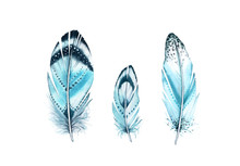 Watercolor Feather Set. Realis...