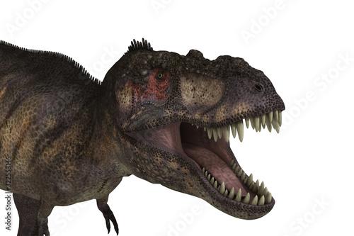 Obraz na plátně Tiranosaurio Rex