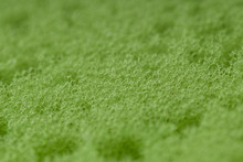 Green Abrasive Sponge Texture Background. Close Up . The Texture Sponge Green