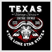 Texas - Vintage Typography Wit...