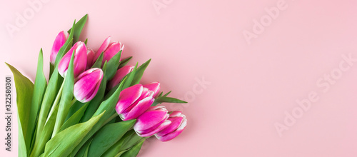 Photo Pink tulip flower on blue wood table background with copy space for text