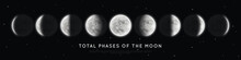 Realistic Phases Of The Moon. ...