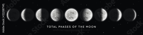 Obraz Realistic phases of the moon. Vector elements lunar collection. Moonlight - fototapety do salonu