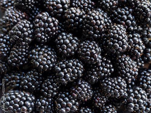 Valokuva Fresh juicy organic dewberry