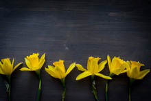 Bouquet Of Yellow  Daffodil In...