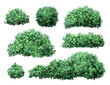 Realistic garden shrub. Nature green seasonal bush, boxwood, floral branches and leaves, tree crown bush foliage. Garden green fence vector illustration set. 3d public park and garden elements
