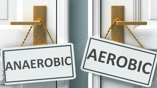 Anaerobic or aerobic as a choice in life - pictured as words Anaerobic, aerobic Wallpaper Mural