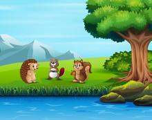 Illustration Of Various Animal...
