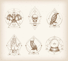 Vintage Style Occultism Logos Or Astrology Label Templates Set. Hand Drawn Bat, Skull, Raven, Owl And Palm Hand Sketches With Retro Typography. Shabby Texture Background.
