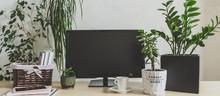Workplace  Home Among Plants I...