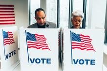 Minority Voting During US Elec...