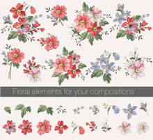 Vector Floral Set With Leaves ...