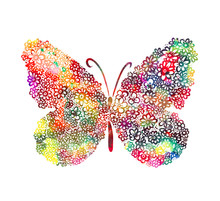 A Multi-colored Butterfly Made...