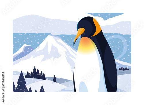 Fototapeta penguin at the north pole, arctic landscape obraz