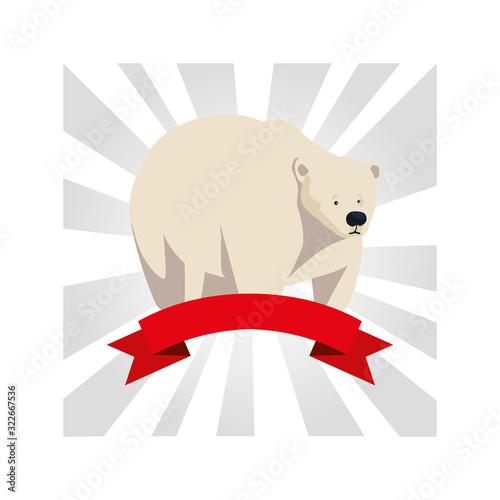 Fototapeta polar bear greeting card with ribbon obraz