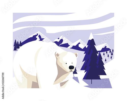 Fototapeta polar bear at the north pole, arctic landscape obraz