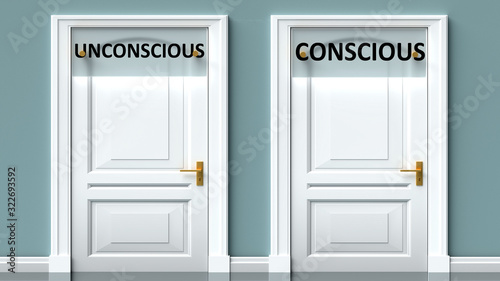 Obraz Unconscious and conscious as a choice - pictured as words Unconscious, conscious on doors to show that Unconscious and conscious are opposite options while making decision, 3d illustration - fototapety do salonu