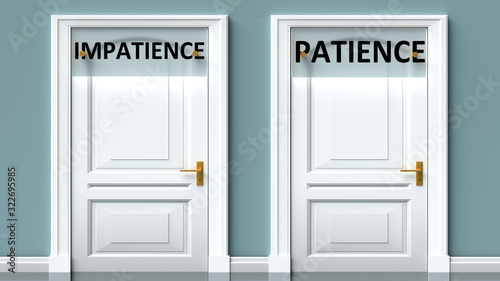 Impatience and patience as a choice - pictured as words Impatience, patience on Fototapet