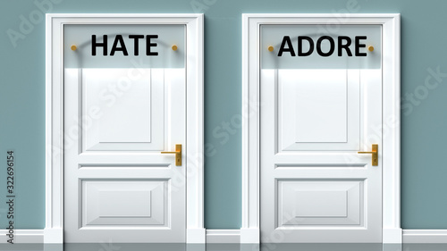 Photo Hate and adore as a choice - pictured as words Hate, adore on doors to show that