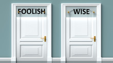 Foolish And Wise As A Choice - Pictured As Words Foolish, Wise On Doors To Show That Foolish And Wise Are Opposite Options While Making Decision, 3d Illustration