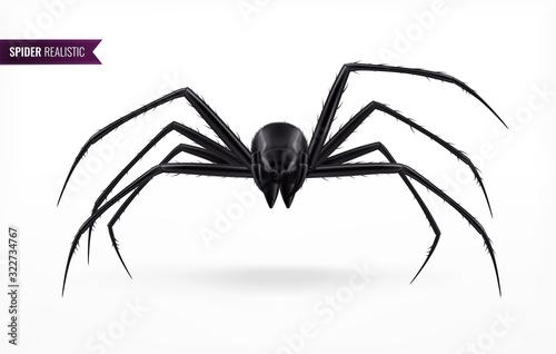 Canvastavla Black Realistic Spider