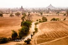 Bagan Temple View Betail