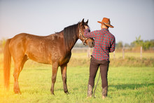 Cowboy And Brown Horse On Green Field In Sunny Day
