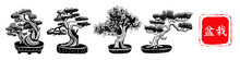 Set Of 4 Bonsai Trees. Vector ...