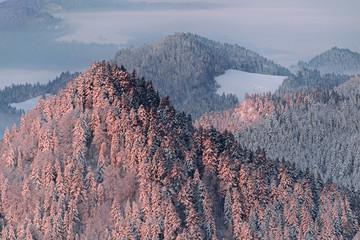 FototapetaNowa Góra- Pieniny. Zimowy wschód słońca na Okrąglicy.