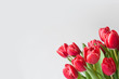 A bunch of red tulips on a light background with copy space. Banner with spring flowers in the lower left corner.