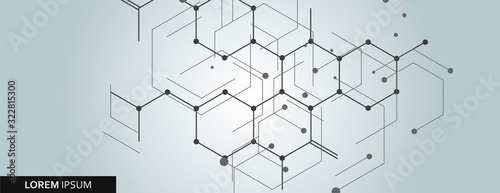 Vector network hexagon and connected cells background Canvas Print