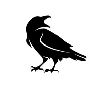Raven Bird Logo Vector Template, Black Silhouette Of A Crow On An Isolated Background