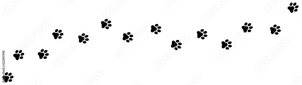 Fototapeta Paw print foot trail. Dog, cat paw print. Vector