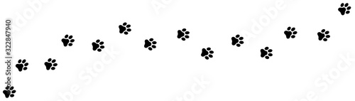 Paw print foot trail. Dog, cat paw print. Vector