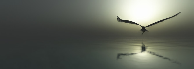 Eagle flying flush with water