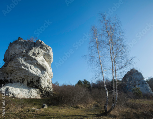skała i brzozy - 322857347