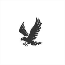 Eagle Logo Design Vector Icon