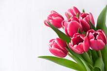 Spring Banner. Purple Pink Tul...