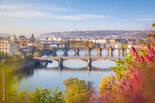 Fotografie, Obraz View over skyline of Prague old town with Charles bridge in spring