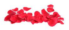 Fresh Red Rose Petals On White...