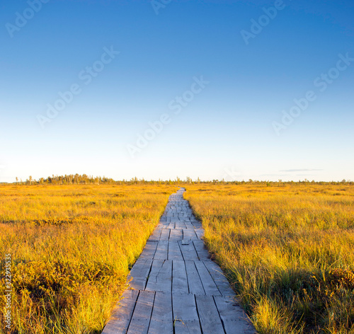 Leinwand Poster Wooden path trough the swamp in autumn with yellow grass