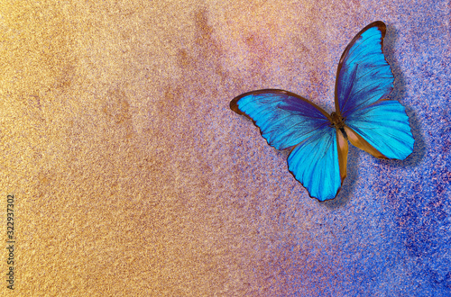 gold and blue background Fototapet