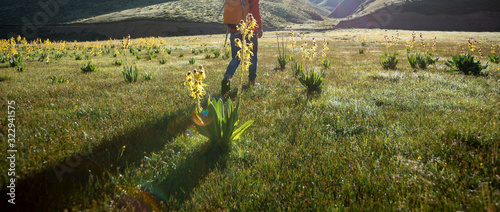 Photo Backpacking woman hiking in the high altitude grassland mountains