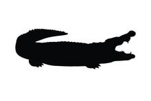 Man In Crocodile Show Silhouette Vector